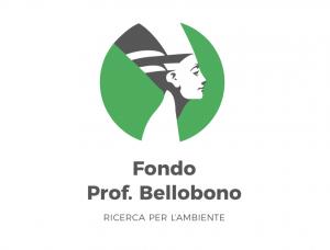 Fondo prof. Bellobono
